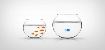 How small credit unions can compete