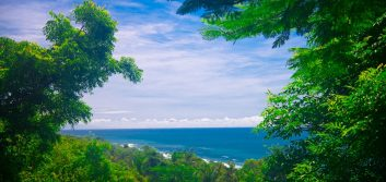 The fintech road to Bali